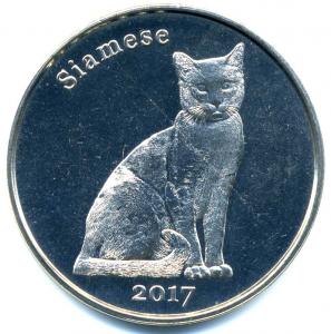Котик-5.jpg