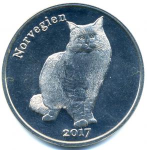 Котик-6.jpg