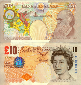darwin-10-pounds.jpg