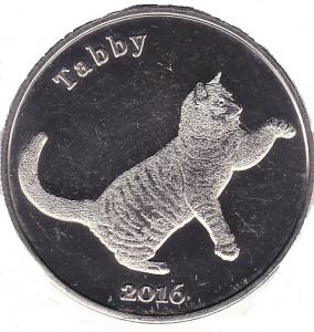 Котик-1.jpg