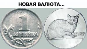 koteyka.jpg
