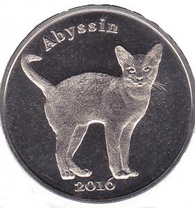 Котик-2.jpg