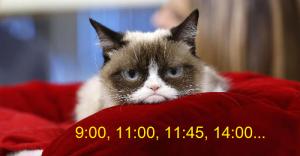 1 Котик.png