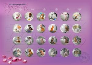 Dogs & Cats 1-4.jpg