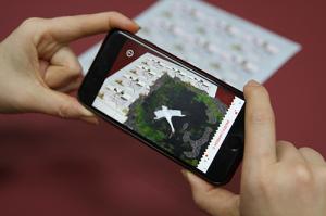 Virtual_Birds_1.jpg